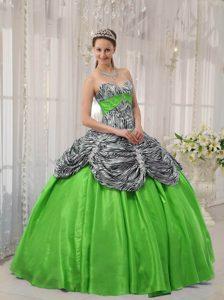 Lovely Sweetheart Taffeta Sweet 16 Dresses in Spring Green and Zebra