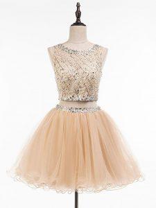 Custom Designed Sleeveless Side Zipper Mini Length Beading Prom Party Dress