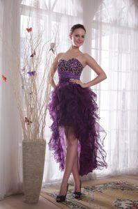 Maxi Purple Column Sweetheart High-low Organza Prom Celebrity Dresses
